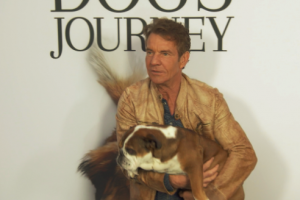A Dog's Journey, Movie Premiere