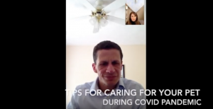 Tips for caring for your pets during Covid-19
